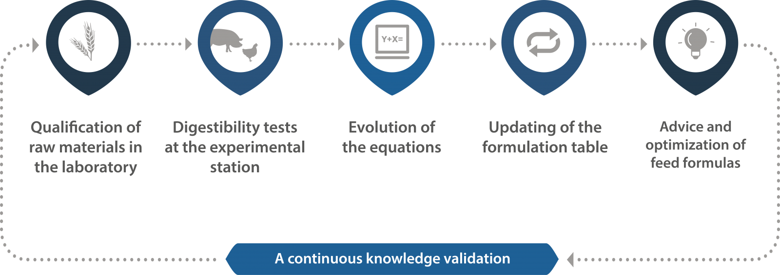 A continuous knowledge validation